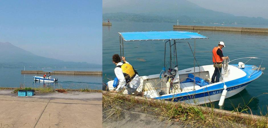 錦江湾クルージング